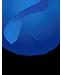广西开泰软件开发有限公司